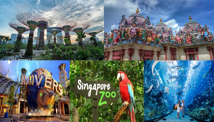 5 Best Places To Visit In Singapore With Family